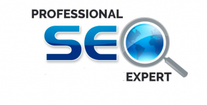 SEO Expert in Connaught Place